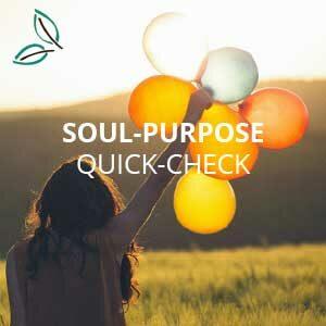 Soul-Purpose-Quick-Check