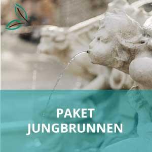 Paket Jungbrunnen - Brunnen