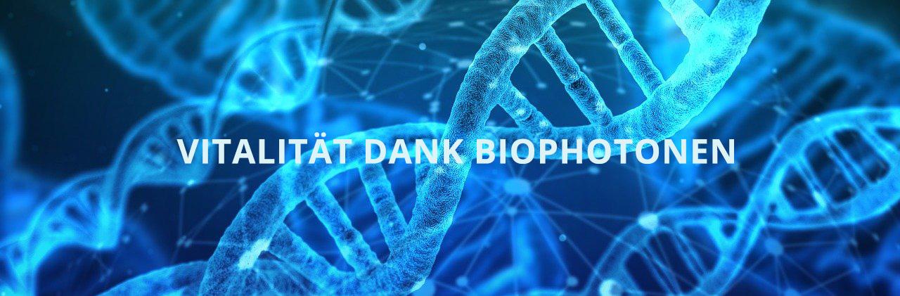 Vitalität dank Biophotonen